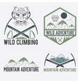 set of vintage labels mountain adventure with snow vector image
