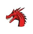 dragon animal icon vector image