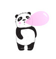 funny panda chewing gum bubble vector image