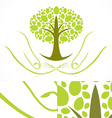 Green Wellness Tree vector image vector image