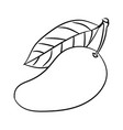 line drawing of mango -simple line vector image vector image