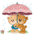 two brown teddy bear boy vector image