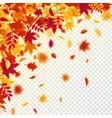 autumn falling leaves nature background with red vector image vector image