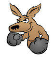 cute kangaroo with boxing gloves vector image