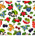 seamless pattern realistic summer berries isolated vector image vector image