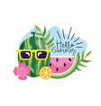 watermelon wearing sunglasses with tropical vector image vector image