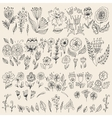 Set of hand drawn flowers and leaves vector image