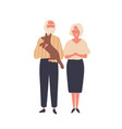 cheerful old couple flat aged vector image vector image
