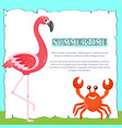 summertime poster with text pink flamingo and crab vector image vector image