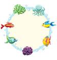 underwater creature border template vector image
