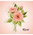 Beautiful bouquet of roses isolated on white vector image vector image