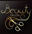beauty salon and stylist hair gold symbol vector image vector image
