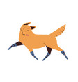 dog with prosthetics legs flat vector image vector image