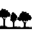 Grass and tree plant silhouette design vector image vector image