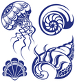 Set of jellyfish and various sea shells vector image vector image