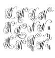 calligraphy lettering script font n set hand vector image vector image