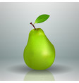 fresh green pear fruit isolated background vector image vector image