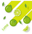 fresh lime fruit background in paper art style vector image