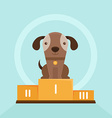 funny puppy winning in a dog show vector image vector image