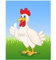 Hen with thumb up vector image