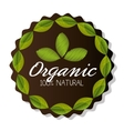 Natural and organic food vector image