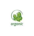 organic leaf logo design template vector image vector image