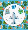 plane world rucksack passport tourist vacation vector image