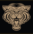 tiger angry face knife head ta vector image