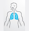 Lungs and human body - vector image