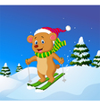 Cartoon bear skiing down a mountain slope vector image