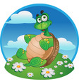 fun tortoise on color background vector image vector image