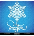 Natural Christmas snowflake vector image
