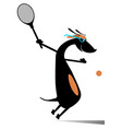 dog playing tennis isolated vector image vector image