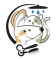 haircut and washing animals vector image vector image