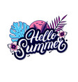 hello summer hand written lettering vector image