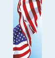 the national flag of the usa vector image vector image