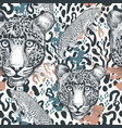 animal print with leopard spotty ornament vector image vector image