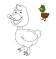 educational game for kids and coloring book-duck vector image vector image
