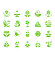 garden color silhouette icons set vector image