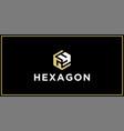 gy hexagon logo design inspiration vector image vector image