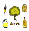 olive doodle icons set with tree and oil bottle vector image vector image