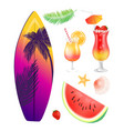 surfing board summer icons set vector image vector image
