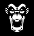 White Gorilla Face vector image vector image