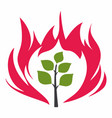 burning bush vector image vector image