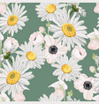 camomile leaves and anemones flowers vector image