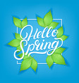 hello spring hand written lettering vector image vector image