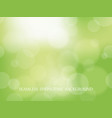 abstract springtime seamless background vector image vector image