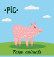 cute pig farm animal character farm animals vector image vector image