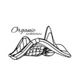organic architecture concept unity vector image vector image