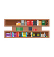 rural shelf with colorful books in flat and solid vector image